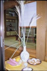 A家 見えにくいが薩摩芋の奥の柿のまわりにジャガイモがある