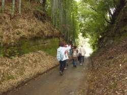 三輪町と寺家町を結ぶ「山谷の切通し」、圧倒的な迫力がある。