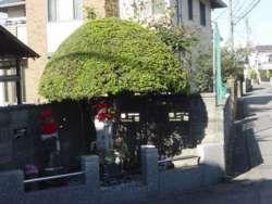 緑区相原の通称「傘地蔵」、地蔵を覆う特徴的な傘の形が目につく