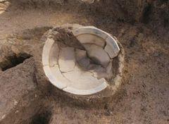大日野原遺跡から出土した縄文土器