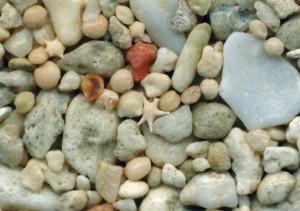 いろいろな砂を顕微鏡で見てみよう @ 相模原市立博物館 実習実験室 | 相模原市 | 神奈川県 | 日本