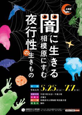 生物企画展「闇に生きる 相模原にすむ夜行性の生きもの」