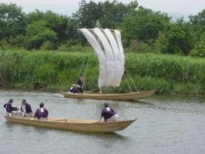 帆一杯の風を受けて川を遡る