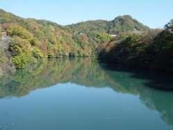 県境付近の相模川、紅葉が水面に写る。(境川橋)