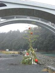 6  緑区小倉 小倉橋の下側(1月14日午前 みぞれ)