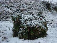 7  緑区寸沢嵐 雪がうっすら積った道志地区の道祖神の小屋(1月14日午前 雪)