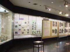 特別展示室での 各サークルの展示