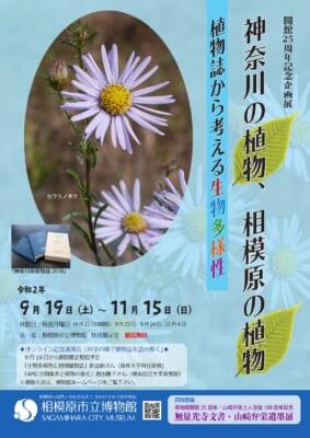 企画展「神奈川の植物、相模原の植物 植物誌から考える生物多様性」